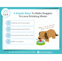 4 Simple Ways To Make Doggies To Love Drinking Water