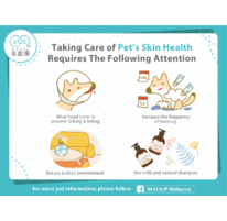 Taking Care Of Pet's Skin Health Requires The Following Attention