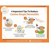 4 Important Tips To Reduce Canine Atopic Dermatitis
