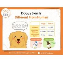 Doggy Skin Is Different From Human