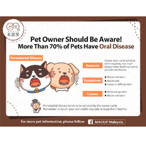 Pet Owner Should Be Aware! More Than 70% Of Pets Have Oral Disease