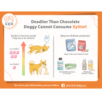 Deadlier Than Chocolate | Doggy Cannot Consume Xylitol